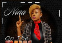 Nina - ON THE RUN (prod. by Don Adah) Artwork | AceWorldTeam.com