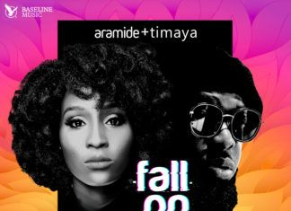 Aramide ft. Timaya - FALL ON THEM (prod. by Sizzle PRO) Artwork | AceWorldTeam.com