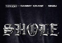Yung6ix ft. Dammy Krane & Sinzu - SHOLE (prod. by Disally) Artwork | AceWorldTeam.com