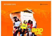 Anthony Sky - BAD GAL (prod. by Nanzo) Artwork | AceWorldTeam.com