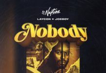 DJ Neptune (feat. Laycon & Joeboy) - Nobody (Icons Remix) Artwork | AceWorldTeam.com